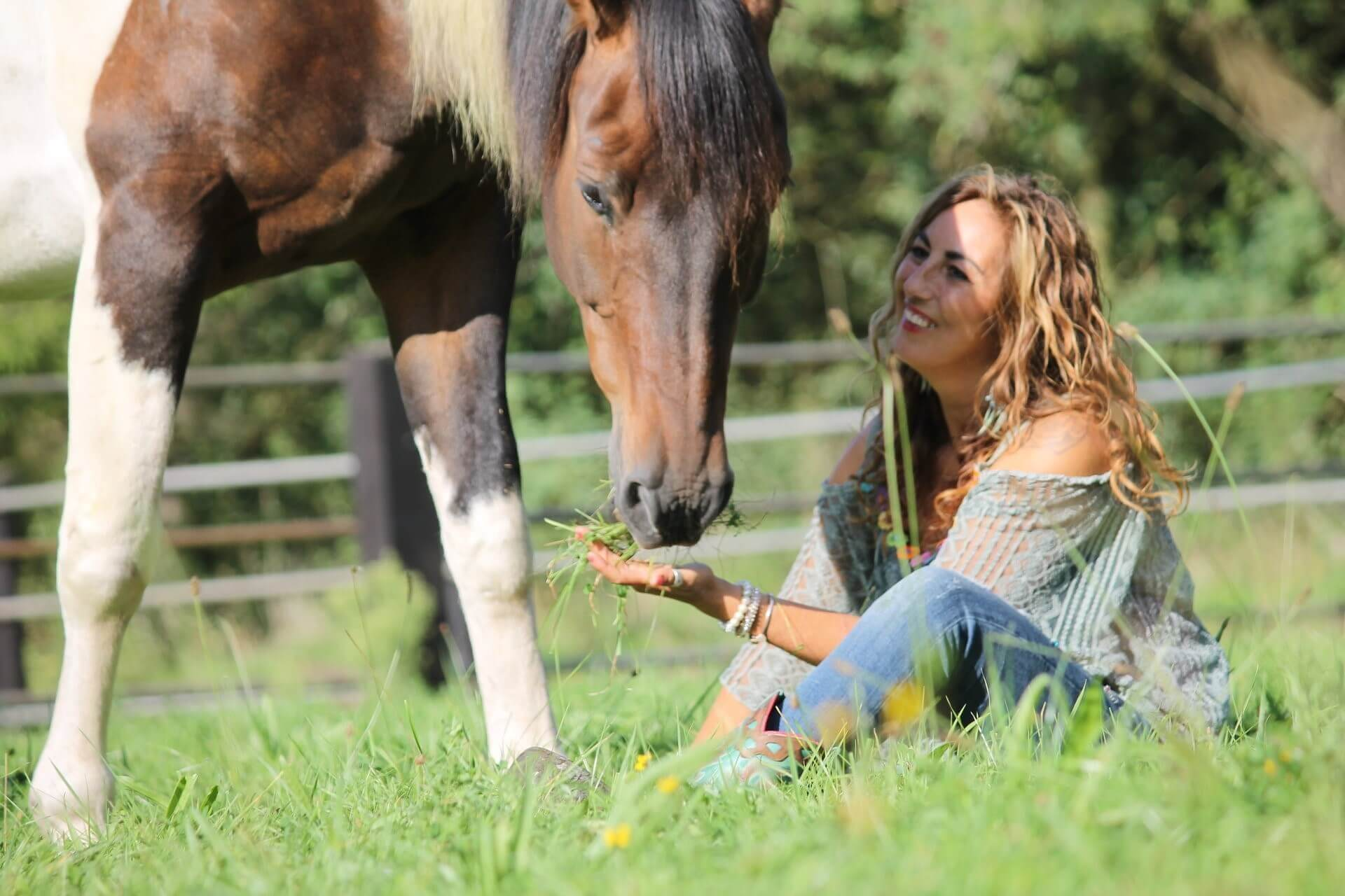 """""""Talking to a horse is the best therapy you need"""""""