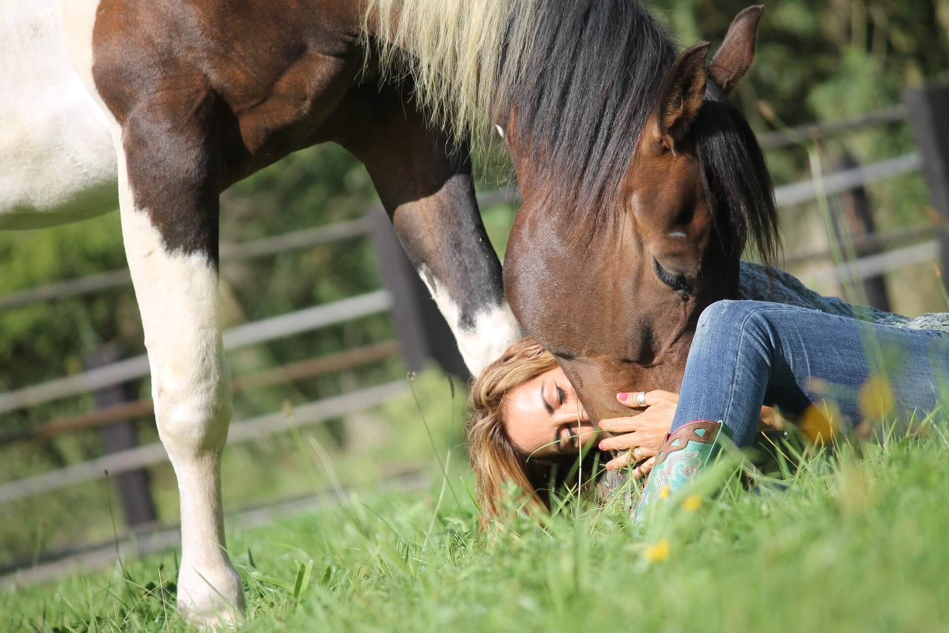 """""""A horse is your best friend, you can tell him anything and no one will ever know"""""""