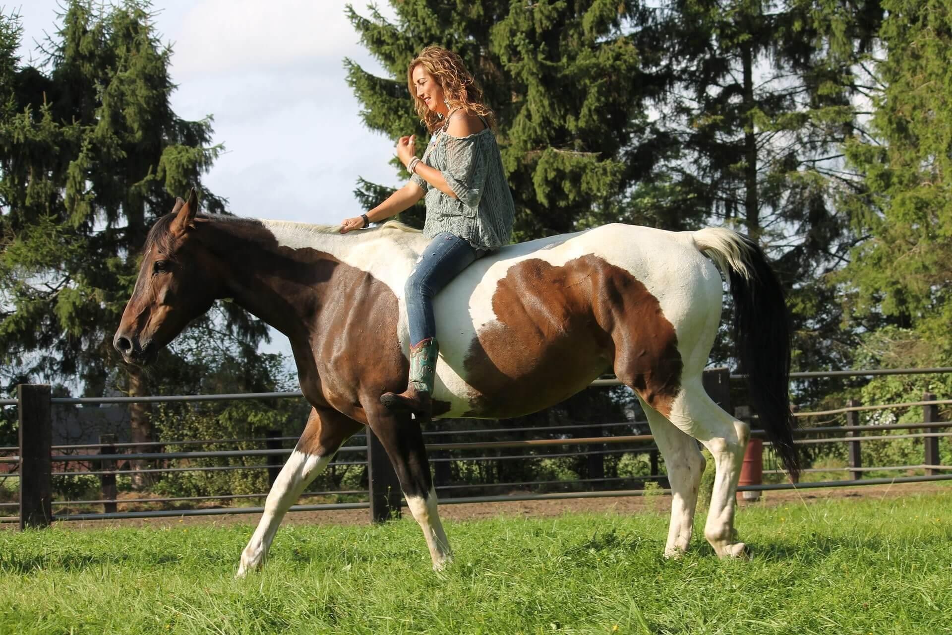 """""""A horse is a teacher, a therapist, a best friend"""""""